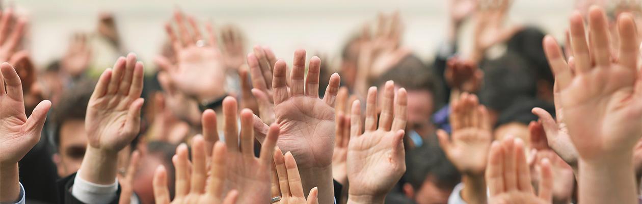 Petycja nauczycieli szkół podstawowych oraz GWO